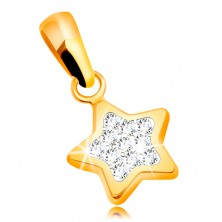 Pendant made of yellow 585 gold - lustrous five-point star, clear zircons